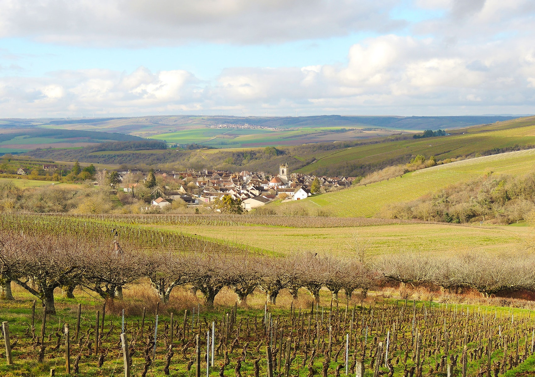 Private Burgundy Day Trip from Paris Including Chablis Wine Tasting and Vézelay